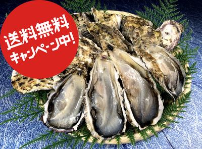〈水産物応援商品〉牡蠣の缶カン焼き