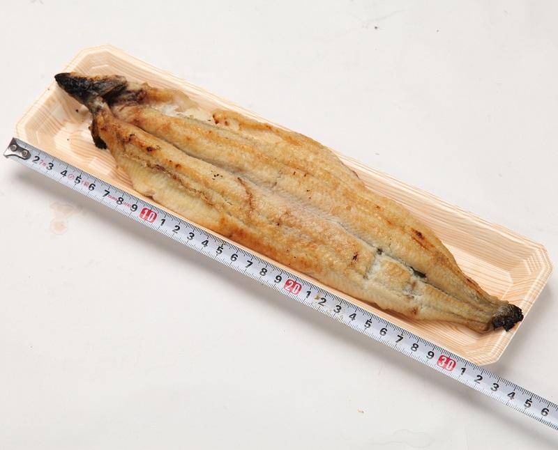国内産(養殖)朝焼き炭火焼 うなぎ白焼き プレミアムサイズ(約160g)