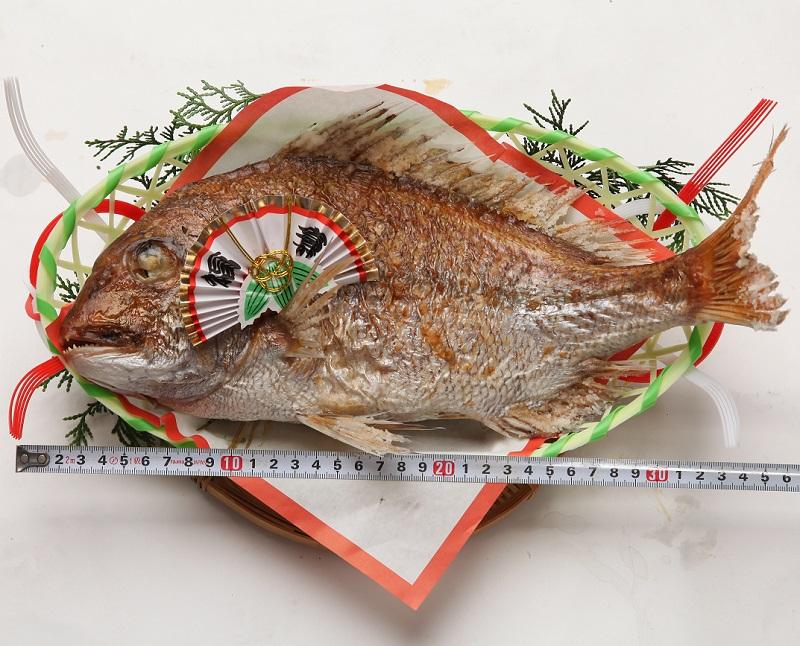 炭火焼職人手焼きの天然 焼鯛 レギュラーサイズ(原体約1k)