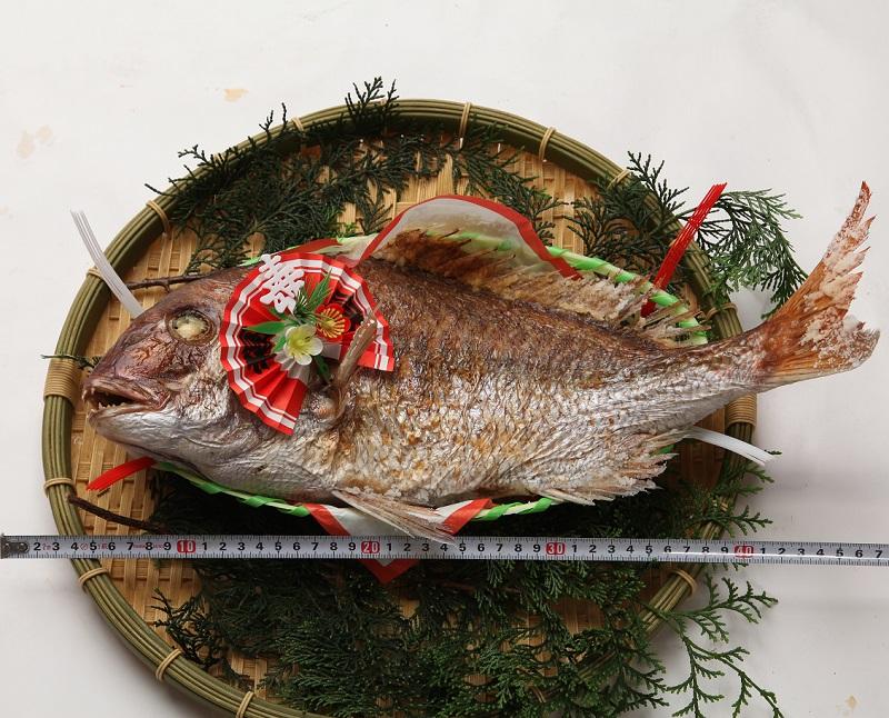 炭火焼職人手焼きの天然 焼鯛 プレミアムサイズ(原体約3k)