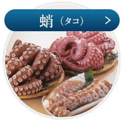 蛸(タコ)