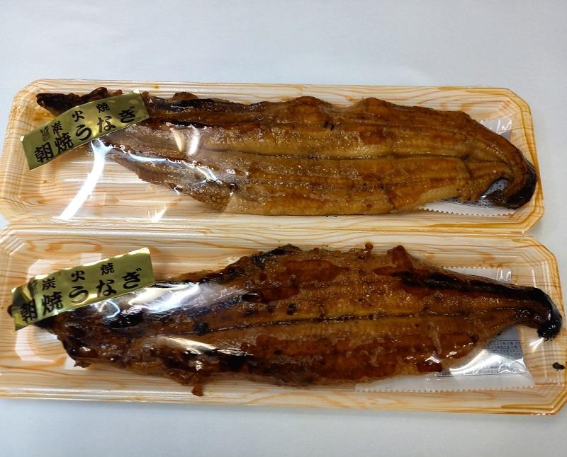 国内産(養殖)朝焼き炭火焼 うなぎ蒲焼 レギュラーサイズ2尾セット【送料無料】