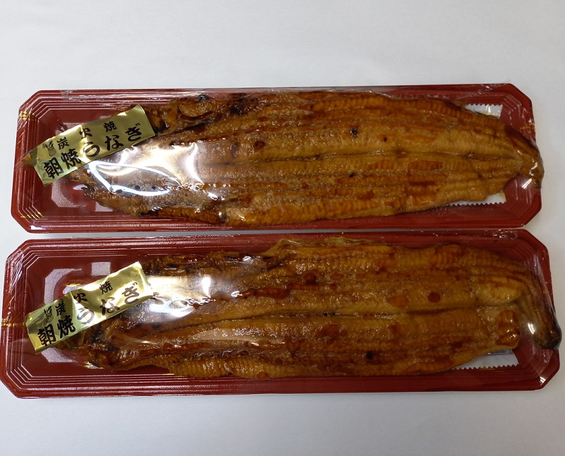 国内産(養殖)朝焼き炭火焼 うなぎ蒲焼 プレミアムサイズ2尾セット【送料無料】