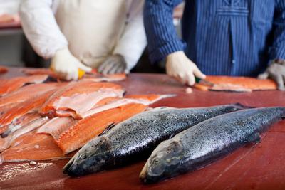 サーモン半身(魚体3.7‐4k程度) ※冷凍推奨商品