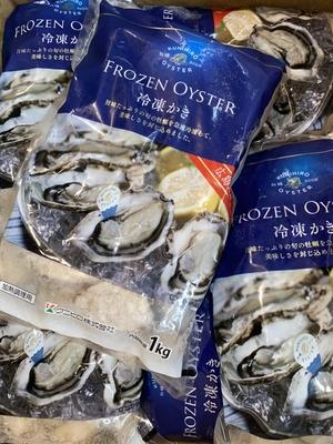 急速冷凍大粒牡蠣850g 加熱用