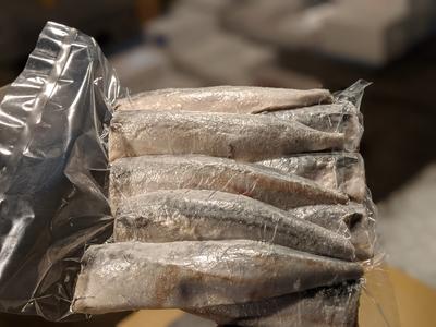 無塩 サバフィーレ 骨あり 約1キロ9枚入