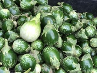 タイ茄子 / Thai Eggplant 1kg