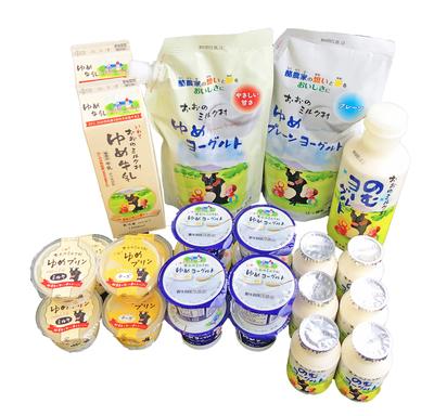 おおのミルク工房 おおのミルク村 アソートセット 【0020231】