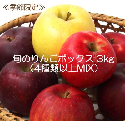 菅野農園 旬のりんごボックス3kg(4種類以上MIX)【0023467】