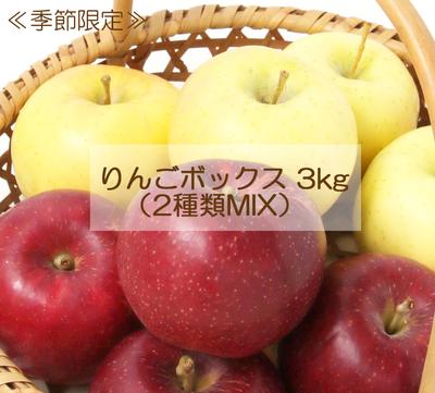 菅野農園 りんごボックス3kg(2種類MIX)【0023466】