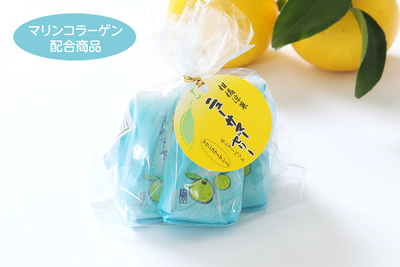 【5個入】柑橘涼菓 ニューサマーゼリー&シャーベット