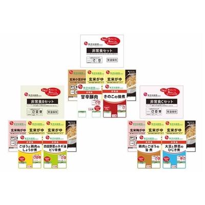 〔送料無料〕〔直送〕【2021夏ギフト】石井食品 非常食3食分×3種セット (867)