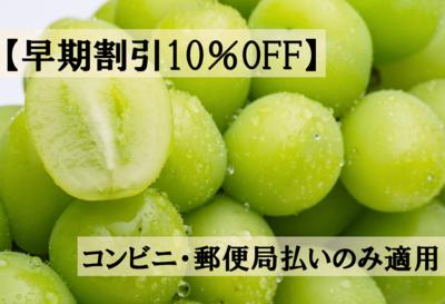 【早期割引10%OFF】シャインマスカット(ご贈答用) 2kg