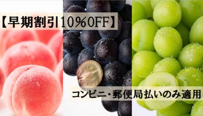【早期割引10%OFF】桃・ぶどう定期便(3便)