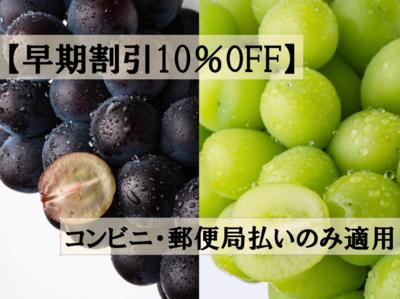 【早期割引10%OFF】2色詰め合せピオーネ&シャインマスカット(ご贈答用) 2kg
