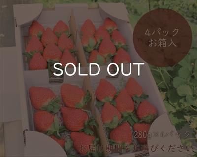 完熟イチゴセット箱入り(4パック)