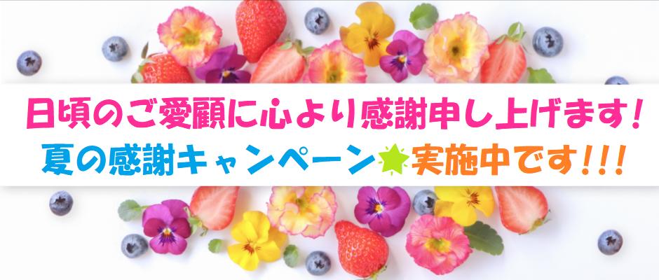 夏の感謝キャンペーン