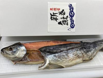 漁師手づくり昔ながらの味!新巻鮭(2枚おろし)約2.2㌔前後の大辛です。※塩辛さは個人の感覚で違う場合があります。