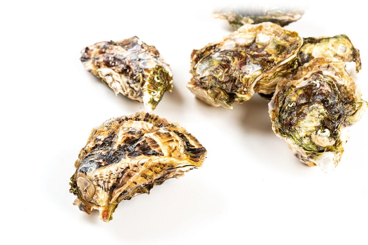 山田産 牡蠣