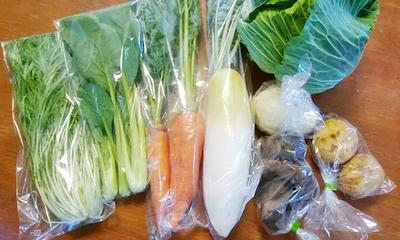 【お得】安心・安全な野菜の詰め合わせ6種類2セット