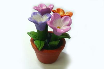 花鉢 カラフルフラワー