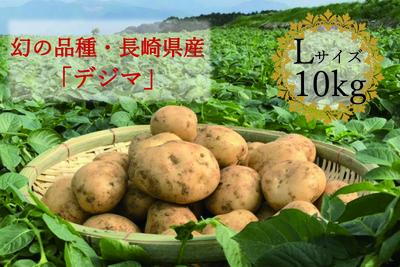 ※秋冬限定!【幻の品種・長崎県南串山産じゃがいも】デジマ(Lサイズ・10kg)