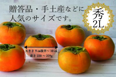 【スーパーフード認定!】和歌山のたねなし柿(秀・2Lサイズ・16玉入)