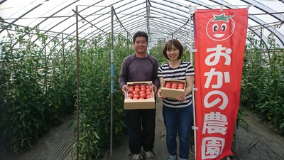おかの農園大玉トマト【冷蔵】