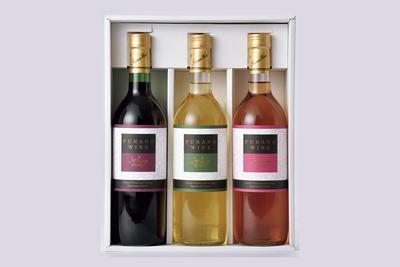 ぶどう果樹研究所ふらのワイン3本セット【F-35】
