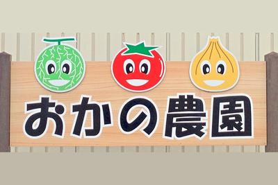 おかの農園 秋野菜セットpart2