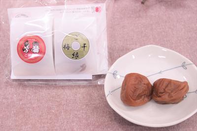 ご縁梅干 2個入 【有限会社紀州梅苑×和歌山電鐵株式会社】