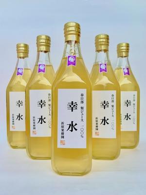 梨ジュース100%「幸水」(大)500ml  6本
