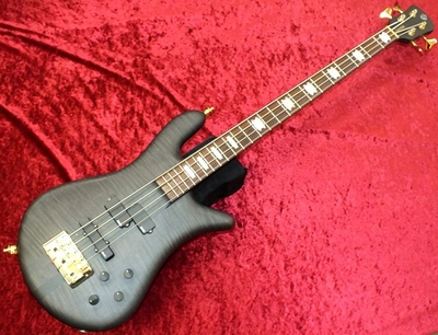 【Spector EURO 4 LX Black Stain 】used