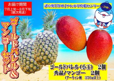 【道の駅許田】ゴールドバレル&マンゴーセット