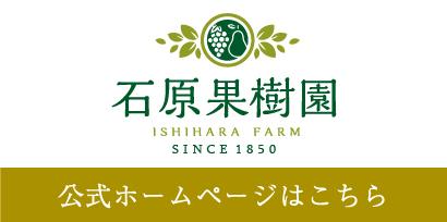 石原果樹園公式ホームページはこちら