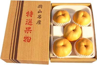 ご贈答用あたご梨(4.5kg箱 5玉)