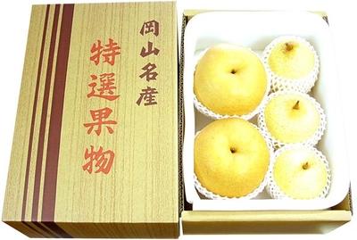 ご贈答用あたご梨&ヤーリーの詰合せ(3kg箱)
