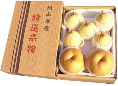 ご贈答用あたご梨&ヤーリーの詰合せ(4.5kg箱)