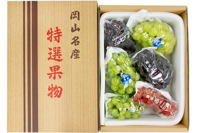 雄宝1房入り季節のぶどう詰合せ(4kg箱)