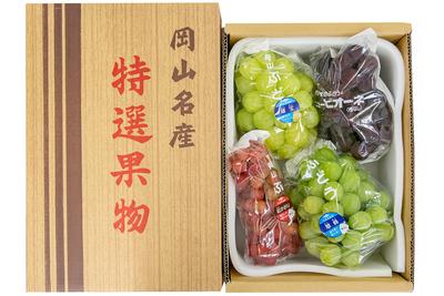 雄宝1房入り季節のぶどう詰合せ(3kg箱)