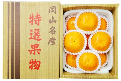 太秋柿 贈答用2kg箱