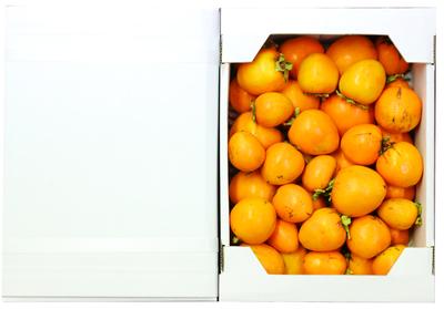 太秋柿 家庭用2kg箱(中小サイズ)