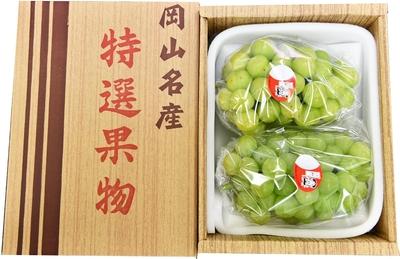 石原果樹園プレミアム 桃太郎ぶどう(大2房箱)