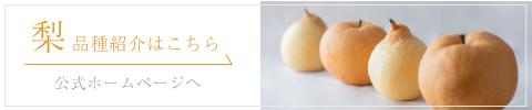 梨の品種紹介はこちら