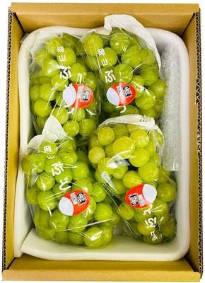 桃太郎ぶどう(3kg箱)