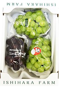 桃太郎ぶどう1房入り 詰合せ(2kg箱)