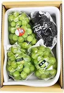 桃太郎ぶどう1房入り 詰合せ(3kg箱)