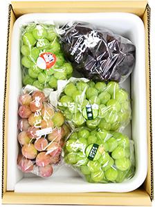 桃太郎ぶどう1房入り 詰合せ(4kg箱)