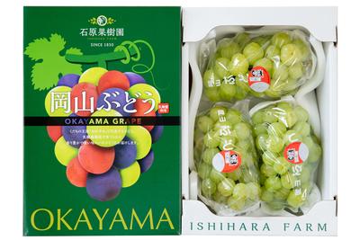 桃太郎ぶどう(2kg箱)