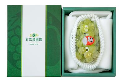 桃太郎ぶどう1房箱(1房600gから699g)